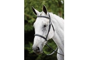 Kincade Leather Raised Padded Fancy Stitch Cavesson Bridle (Full) (Black)