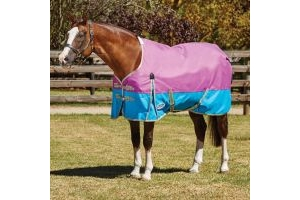WeatherBeeta ComFiTec Essential 0g Lightweight Standard Neck Turnout Rug Purple/Blue/Silver