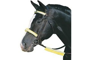 Roma Reflective Bridle Kit (One Size) (Yellow)