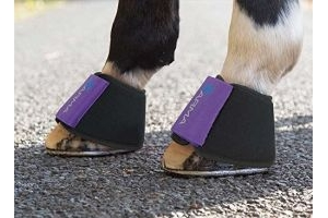 Shires Arma Neoprene Over Reach Boots White Xfull