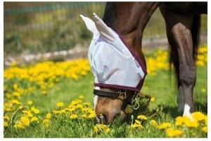 Horseware Amigo Finemesh FlyMask