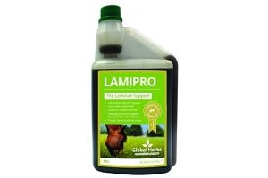 LamiPro Supplement Liquid by Global Herbs (1 Litre)