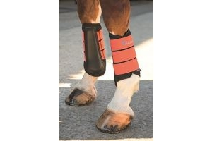Shires ARMA Neoprene Brushing Boots-Orange Cob