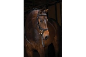 Horseware Rambo Micklem Diamante Competition English Leather