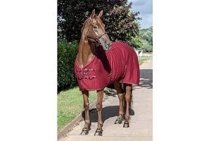 LeMieux Unisex's Thermo Cool Rug Horse, Burgundy, 5'3