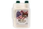 Equine America More Muscle - Liquid - 946ml Bottle
