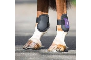 Shires ARMA Fetlock Boots Cob/Full Size Black and Purple
