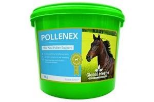 Global Herbs PolleneX Powder (1KG)
