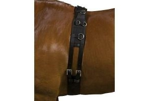 Kincade Deluxe Equigrip Lunge Roller WB1134