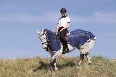 Horseware Amigo FlyRider Rug-Navy/Silver Small
