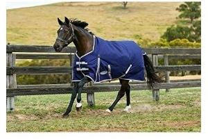 Weatherbeeta Comfitec Lite Essential Standard Neck Turnout Rug (6 ft 6) (Navy/Silver/Red)