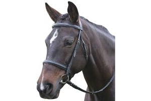 Kincade Leather Raised Cavesson Bridle II (Pony) (Brown)