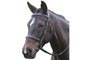 Kincade Leather Raised Cavesson Bridle II (Cob) (Brown)