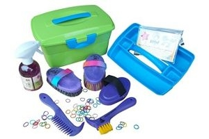 Filled children grooming box in green equestrian brush for horses in purple+ Effol Star Shine and Shires Plaiting Bands