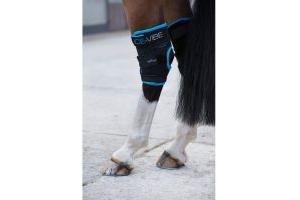 Horseware Ice-Vibe Hock Wrap Black Aqua