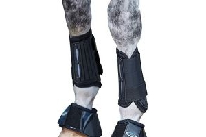 Weatherbeeta Eventing Front Boots Black Cob
