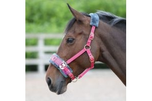 Shires Fleece Lined Lunge Cavesson Pink