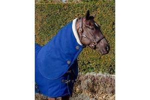 LeMieux Unisex's Four Seasons Neck Cover, Benetton Blue, Large