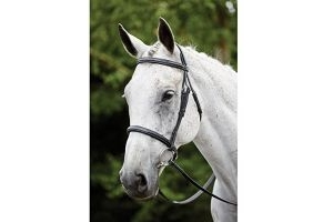 Kincade Raised Padded Fancy Stitch Cavesson Bridle: Black: Full