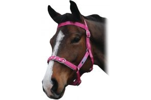 Kincade Brights Nylon Padded Lunge Cavesson Hot Pink