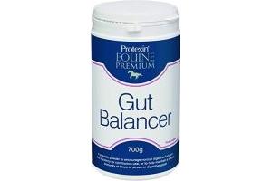 Protexin Equine Premium Gut Balancer 600 g