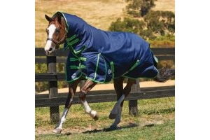 WeatherBeeta ComFiTec Plus Dynamic 360g Heavyweight Combo Turnout Rug Navy/Lime