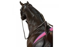 Kincade Poly Anti-grazing Strap