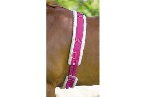 Shires Nylon Fleece Lined Lunge Roller Raspberry