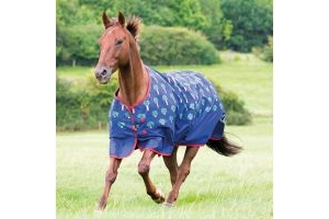 Bridleway Ontario Lightweight Turnout Rug Carrot: 5 ft 9