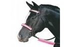 Roma Reflective Bridle Kit - Pink