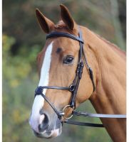 Aviemore Mexican Bridle Black