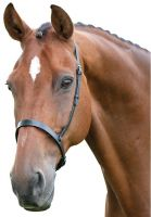 Blenheim Cavesson Hunt Noseband Black
