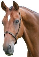 Blenheim Cavesson Hunt Noseband Brown