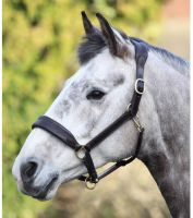 Blenheim Cushioned Travel Headcollar Havana