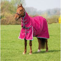 Bridleway Ontario Combo Neck Lightweight Turnout Rug Raspberry