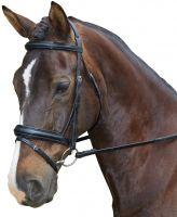 Collegiate Padded Headpiece Patent Flash Bridle Black