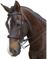 Collegiate Padded Headpiece Raised Weymouth Bridle Brown