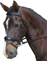 Collegiate Raised Padded Shaped Flash Bridle Black