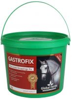 Global herbs Gastrofix 1kg