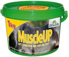 Global Herbs MuscleUP 1kg