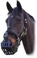 Greenguard Headcollar Black