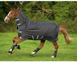 Horseware Amigo Bravo 12 Plus 250g Medium Weight Detach-A-Neck Turnout Rug Excalibur/Blue/Black
