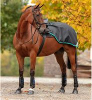 Horseware Amigo Competition Sheet Black/Teal/Dark Cherry