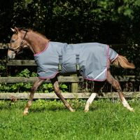 Horseware Amigo Foal 200g Turnout Rug Excalibur/Purple/Yellow
