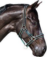 Horseware Amigo Headcollar Black/Teal/Dark Cherry