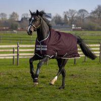 Horseware Amigo Hero 600D 50g Lightweight Standard Neck Turnout Rug Fig/Silver