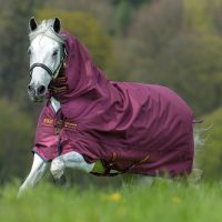 Horseware Amigo Hero Acy All-In-One 200g Medium Weight Combo Neck Turnout Rug Burgundy/Red/Navy