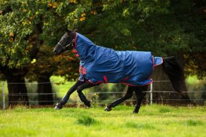 Horseware Mio All-In-One 350g Heavy Weight Combo Neck Turnout Rug Dark Blue/Red