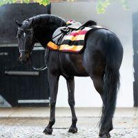 Horseware Rambo Exercise Sheet Whitney Stripe Gold