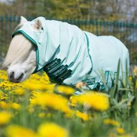 Horseware Rambo Petite Sweet Itch Hoody Ice Green